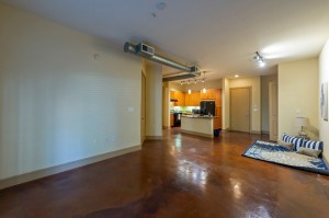 One Bedroom Apartments for Rent in Houston, Texas - Apartment Kitchen & Living Room & Dining Room